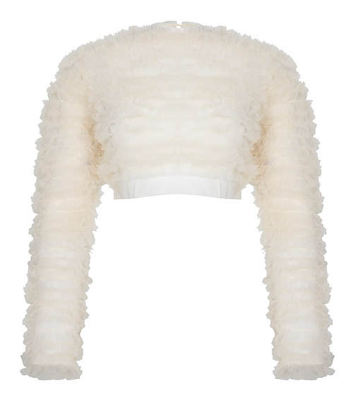 Ruffled Tulle Crop Top front view