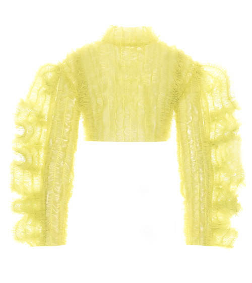 Ruffled Tulle Top front view