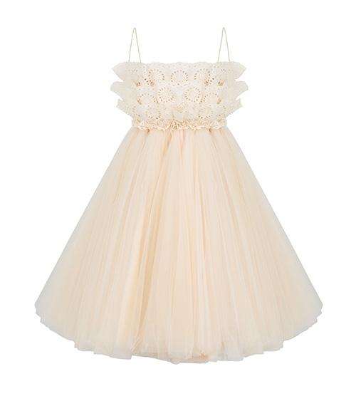 Embroidered Tulle Mini Elbise önden görünümü