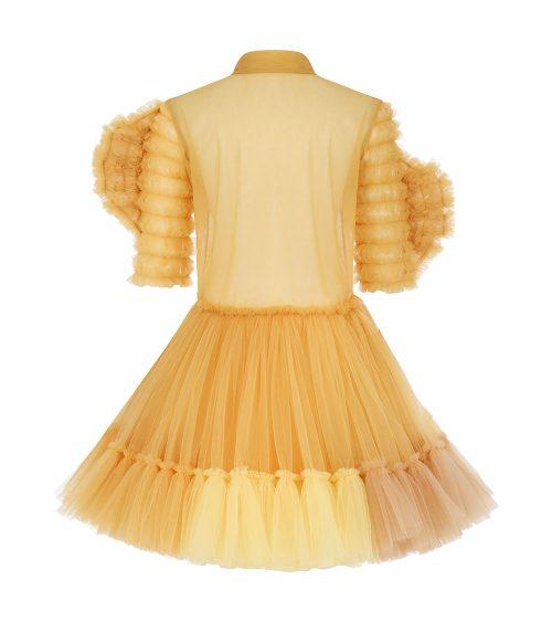 Sundowner Tulle Dress back view
